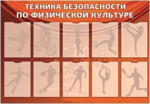 Стенд рядом с залом физкультуры Техника безопасности по физической культуре